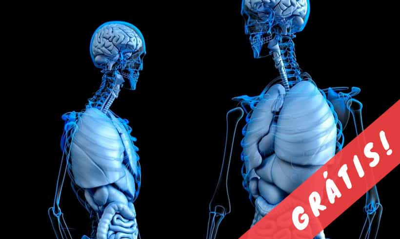 Livros-de-Anatomia-PDF-portada